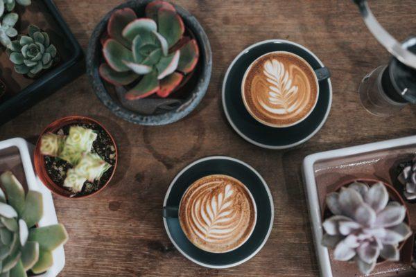 コーヒー好きな人は読んで