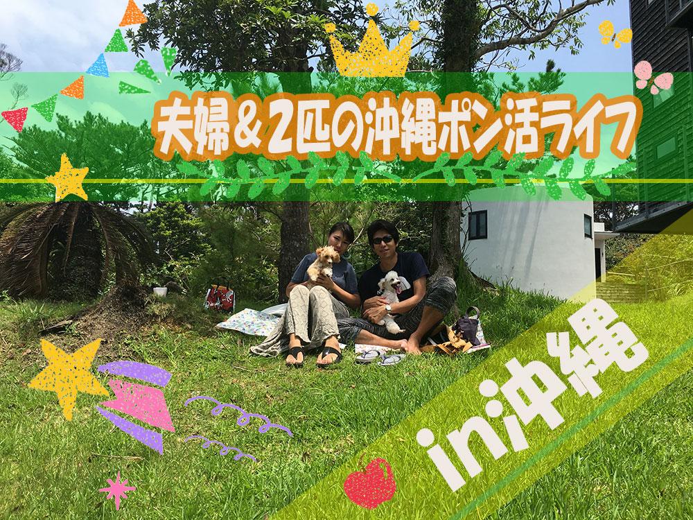 夫婦&2匹のポイ活ライフin沖縄の管理人プロフィールだヨ!